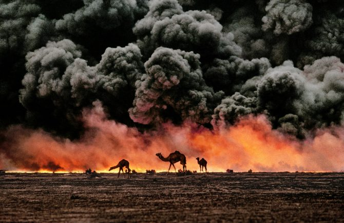 Кувейт © Steve McCurry